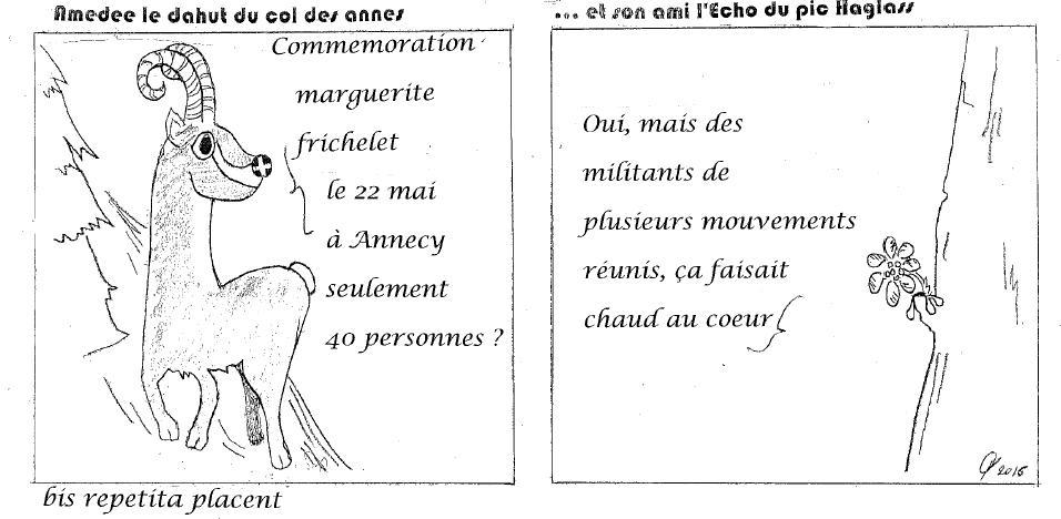 Amédée 34