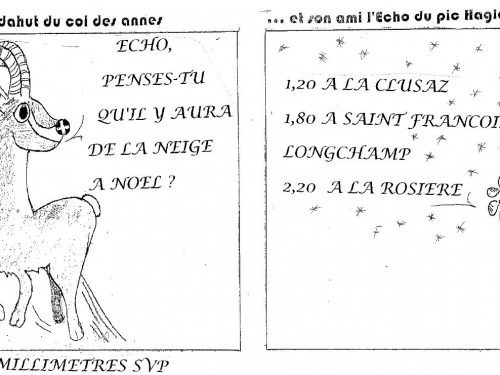 Amédée 55